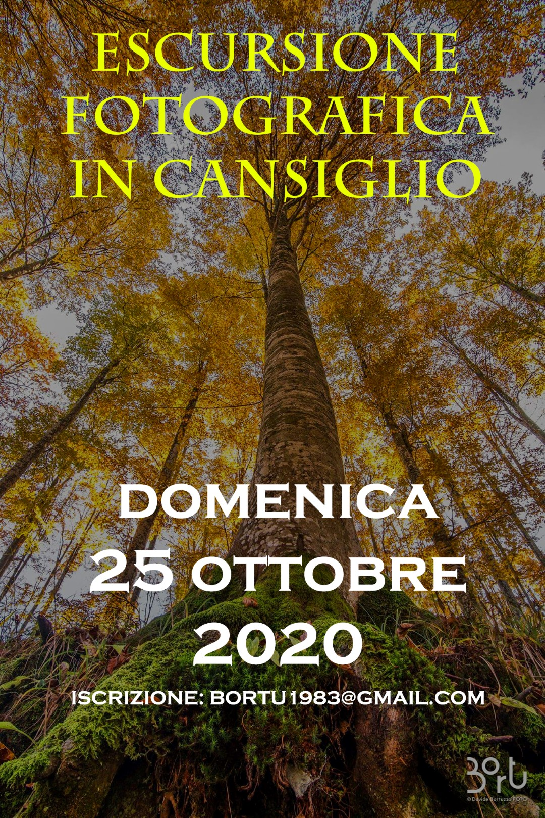 AUTUNNO IN CANSIGLIO